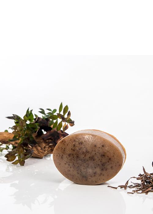 Le Savon - Algues Sauvages Acadiennes